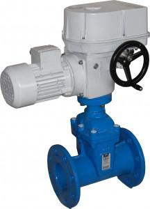MO 3+globe valve